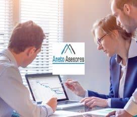 Aneto Asesores